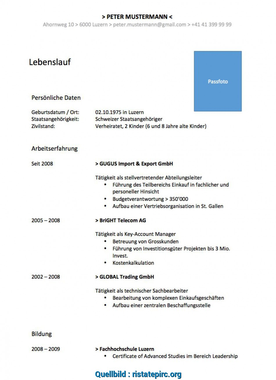 Perfekt 87 Examples Lebenslauf Muster 2016 Word Datei, Any Positions