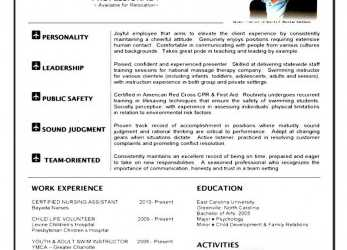 Liebling Resume Template Cabin Crew Cover Letter Flight Attendant Letters Top