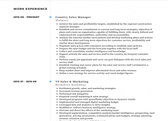 Oben Country Manager, Resume Samples & Templates, VisualCV
