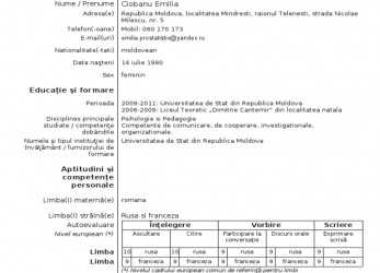 Briliant Download Curriculum Vitae Europass, Guglielminosrl