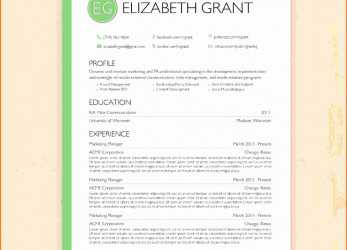Prämie 022 Download Resume Format In Word File, Document Template Europass Cv Of Ideas
