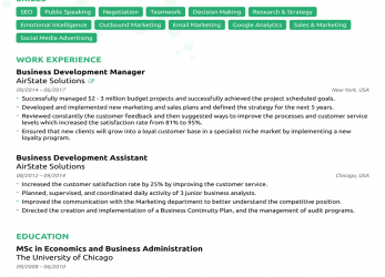 Experte Resume Format Sample 2018, 2-Resume Format, Executive Resume