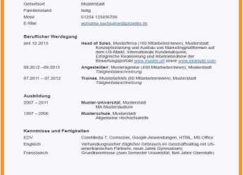 Prämie Groß Musikministerium Lebenslauf Probe Bilder Entry Level Resume