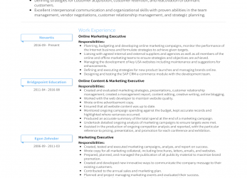 Perfekt Online Marketing Executive, Resume Samples & Templates, VisualCV