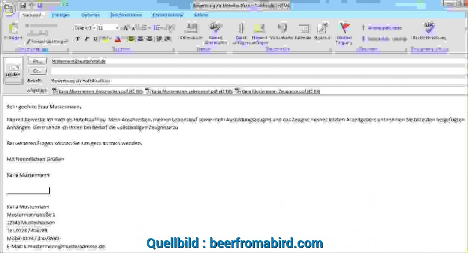 Experte 17+ Email, 5008, Beerfromabird