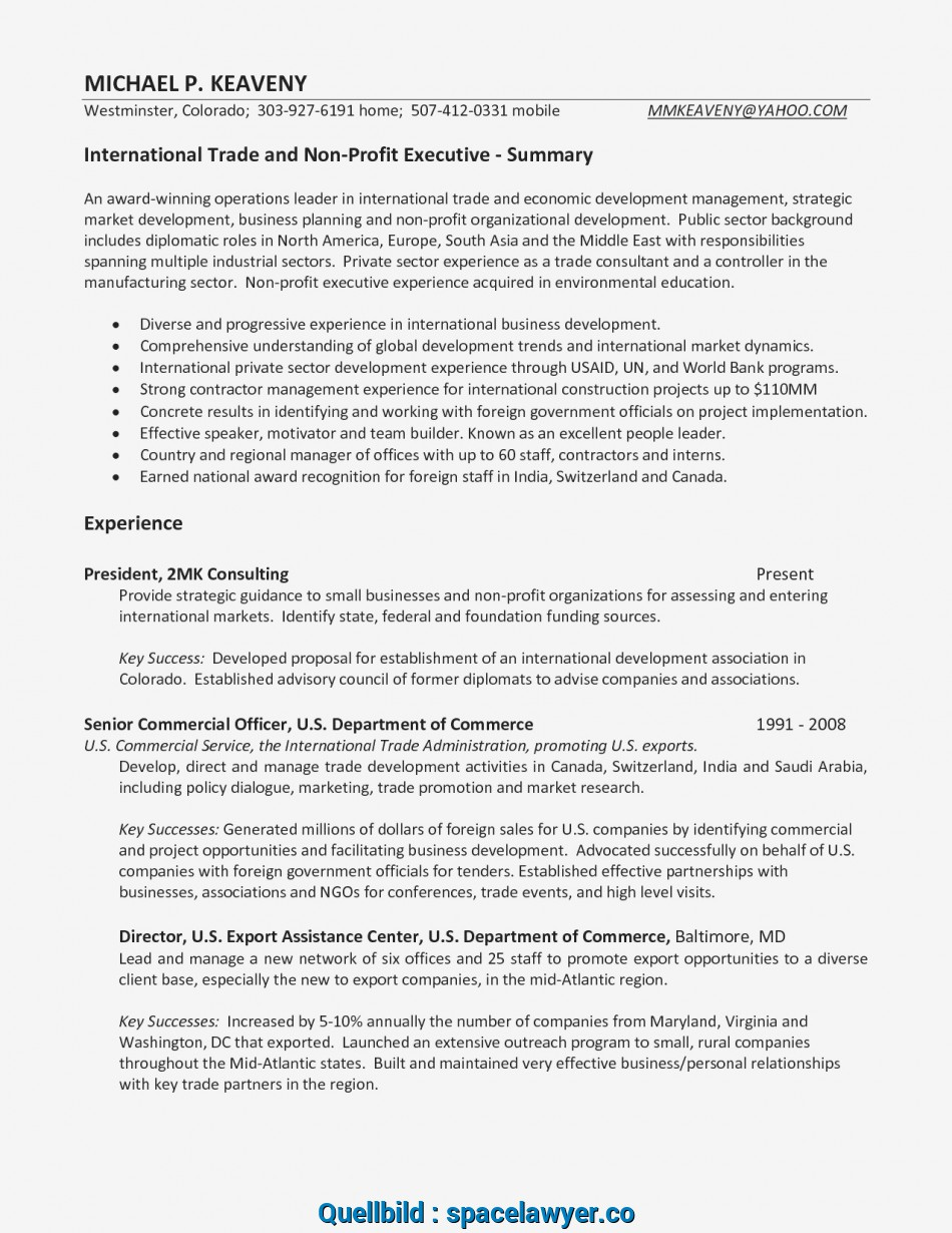 Vorhanden Resume Template Business Consultant Valid American Resume Sample, Student Resume 0D Wallpapers 42 Awesome