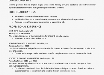 Experte High School Graduate Resume Example, Work Experience