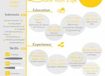 Experte An Infographic Of My Resume. Creative Curriculum Vitae. Industrial Design Engineering, Product Design